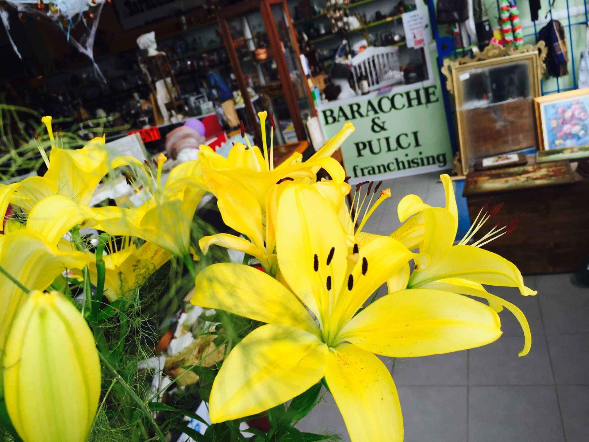 Baracche&Pulci